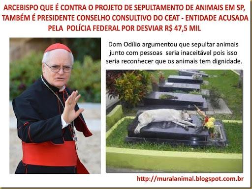 animais-cemiterio