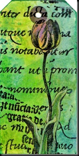 tulip tag