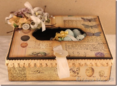 egg shadow box side