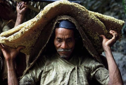 honey-cacciatori-nepal-10