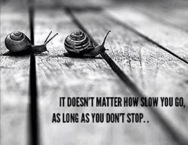 Herbie Robertson - It does not matter how slow you go, as long as you do not stop.