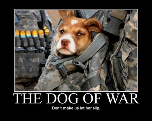 Dog fo War 2