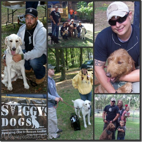veterans and service dogs