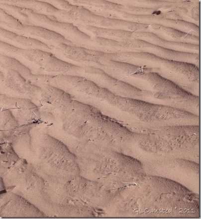 05 Sand ripples along Wire Pass trail UT (939x1024)