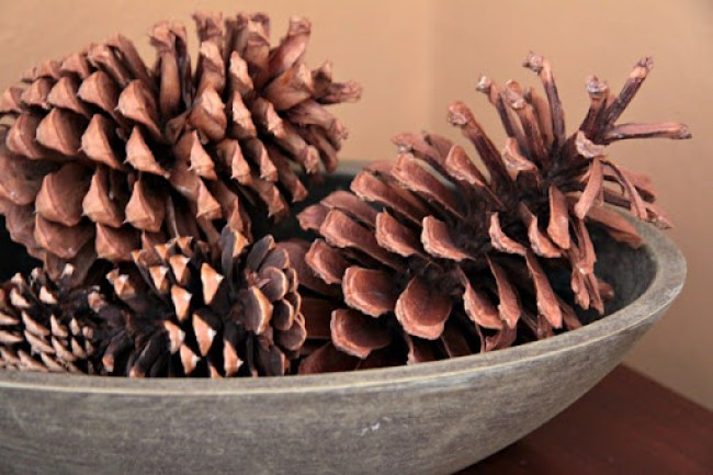 pinecone holiday decorations