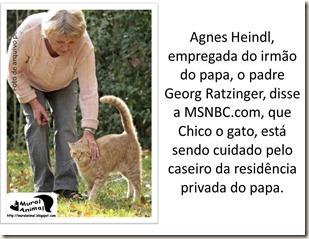 papa_ama_gatos (4)