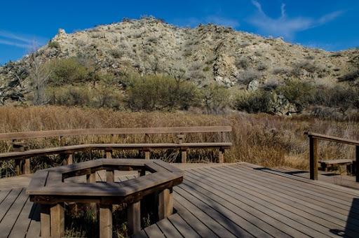 Big Morongo Canyon (16 of 63)