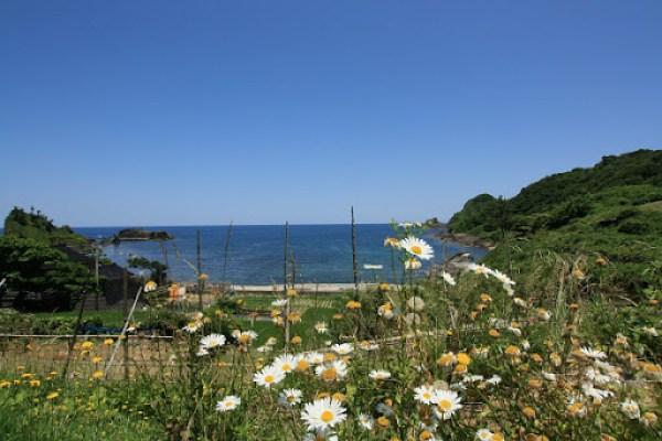 kinoura1.jpg
