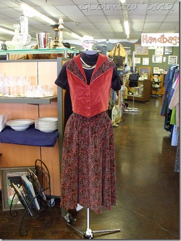 01 Outfit at Yavapai Humane Society Thrift Shop in Prescott AZ (768x1024)