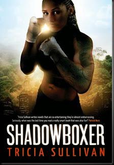 SullivanT-1-Shadowboxer