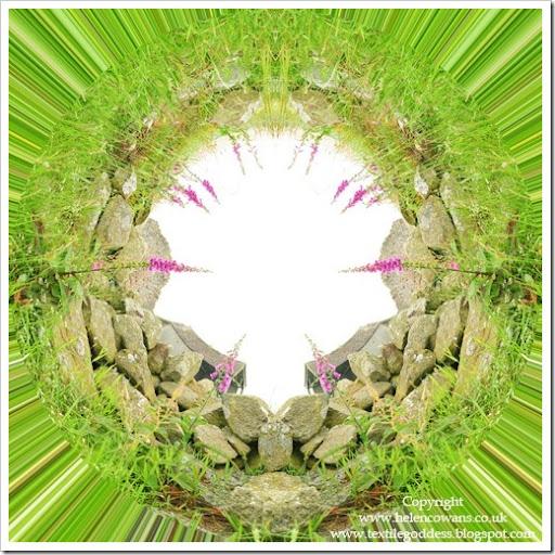 foxgloves circlewebcr