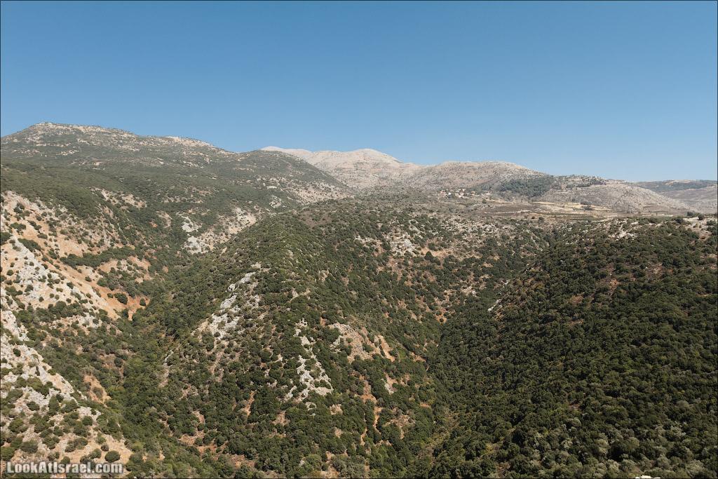 LookAtIsrael.com: Фото-блог о путешествиях по Израилю. Тель Авив, Иерусалим, Хайфа Я могу ошибаться, но судя по крышам - деревенька Неве Атив. Самое высокое и самое северное еврейское поселение в Израиле