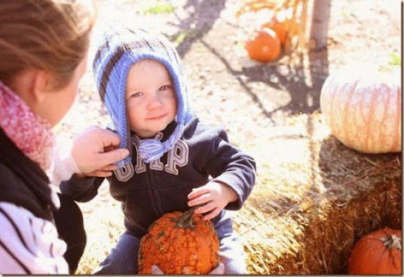 pumpkin patch 2013 070