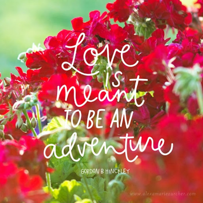 love is meant to be an adventure