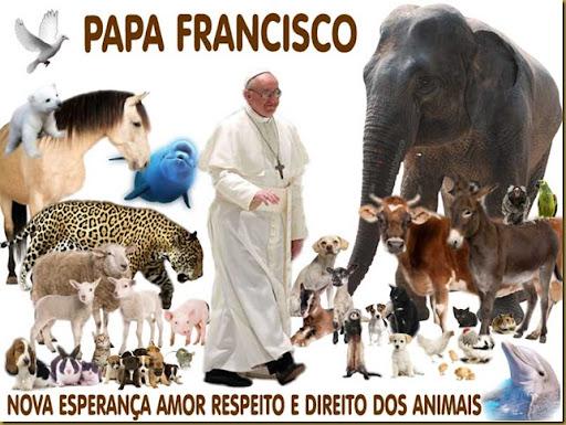 papa_francisco_animais