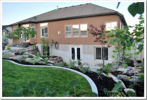 backyard 2011 013