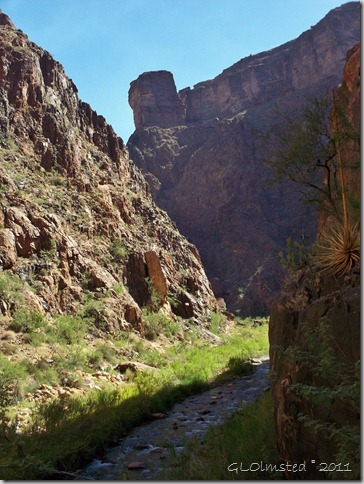 Bright Angel Creek coming out of The Box North Kaibab trail Grand Canyon National Park Arizona