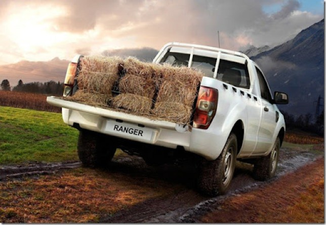 2012_ford_ranger_single_cab_01-4d9417cc30276[3]