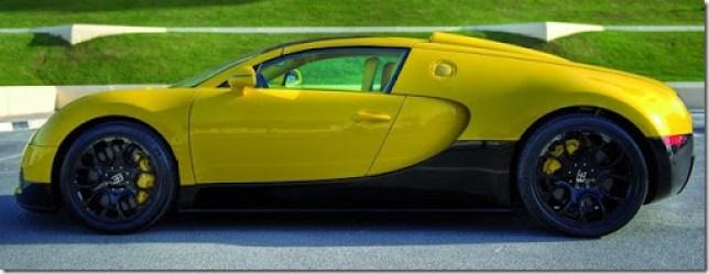 Bugatti-Veyron-Grand-Sport-8[2]