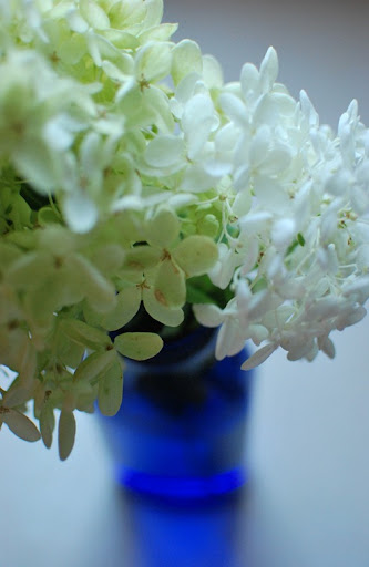glass, pillow, hydrangeas 029