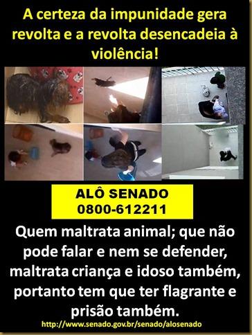 impunidade_gera_revolta