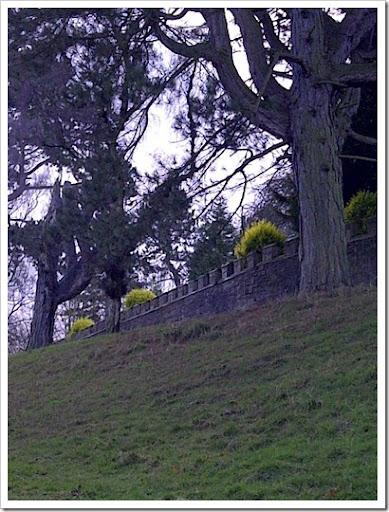 Durham-20121230-00157