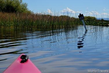 Crystal Creek Kayak (33)