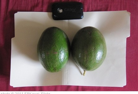 'Giant avocados from Kauai' photo (c) 2011, EBKauai - license: http://creativecommons.org/licenses/by/2.0/
