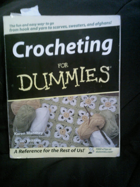 Dummies Can Do : Book #2