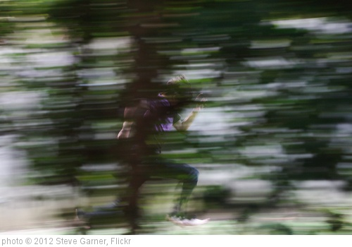 'Run!' photo (c) 2012, Steve Garner - license: http://creativecommons.org/licenses/by/2.0/