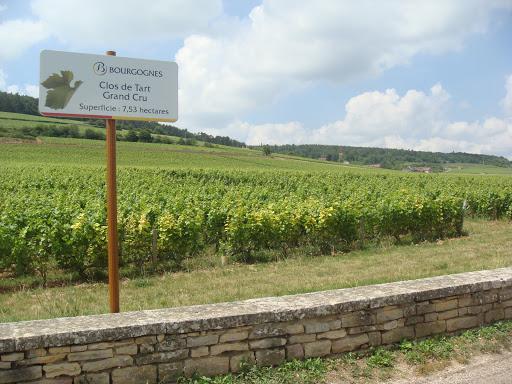 Primeira fotogarfia publicada no artigo Borgonha: Parte V
