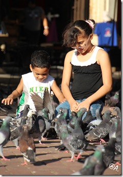 bambini e piccioni - artgamila