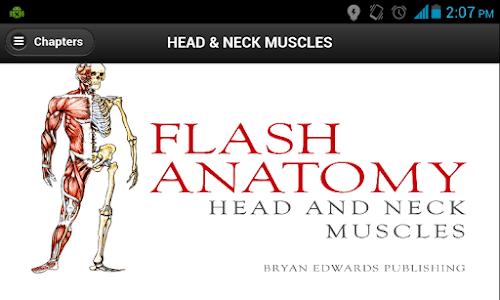 Flash Anatomy Head Neck Muscle screenshot 0