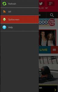 Newspaper Browser Lite screenshot 7