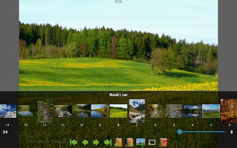 Perfect Viewer screenshot 9