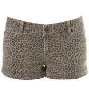 Leopard Animal Print Hotpants Shorts by Miss Selfridge