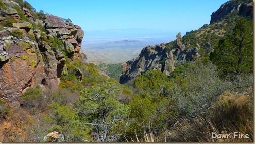 South rim hike,Big bend_069