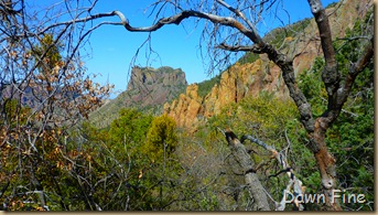 South rim hike,Big bend_087