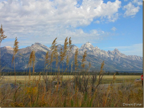 Drive in tetons_20090913_028