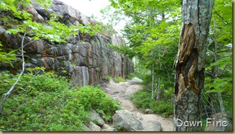 Gorham mt hike_085
