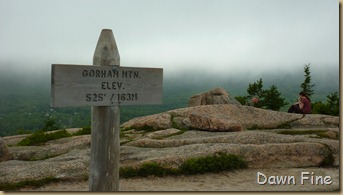 Gorham mt hike_073