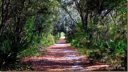 Silver Springs State Park_264