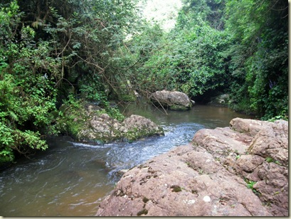 River below Lone Creek Falls Mpumalanga South Africa