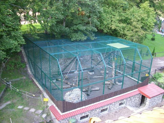 Woliera rezusów - Zoo Oliwa