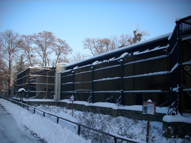 Nawet Dom Dużych Drapieżców zimą wygląda lepiej...