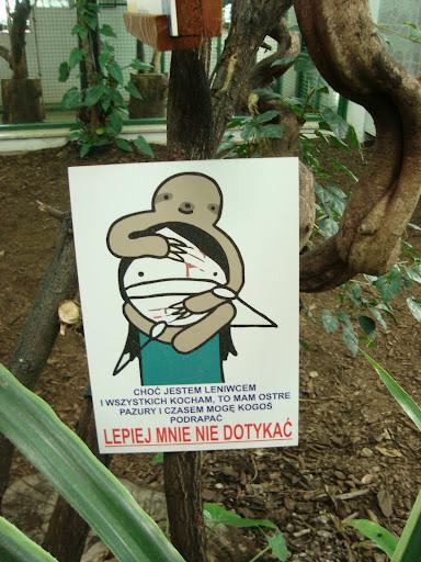 Leniwca dotykać nie wolno!