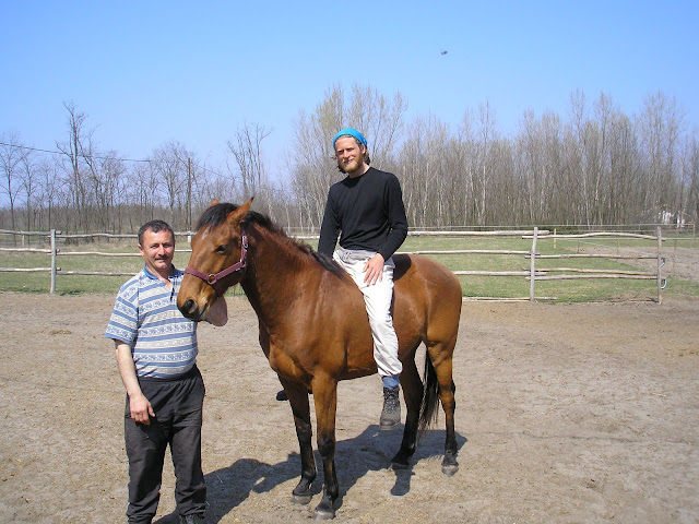 I asked to go for a ride on this horse and I did, but it was quite short. It walked one step, galloped one step, stopped and I flew off and (this bit is a little blurry) I did a double somersault and landed on my chest and head. No harm done, but I did stagger for a minute.