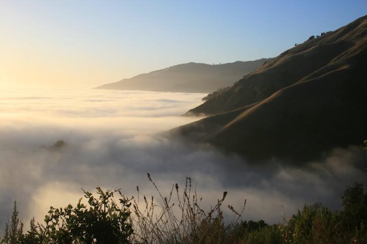 Sweet, Glorious ocean of fog.