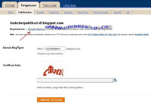 domain co.cc gratis 11