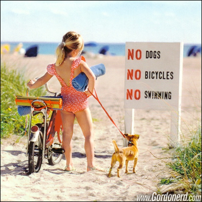 nodogsnobicyclesnoswimming Proibições decepcionantes